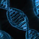「オーファン・ブラック 暴走遺伝子」シーズン1・感想と評価【海外ドラマ・レビュー】