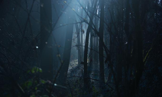 「死霊のはらわたリターンズ」シーズン2